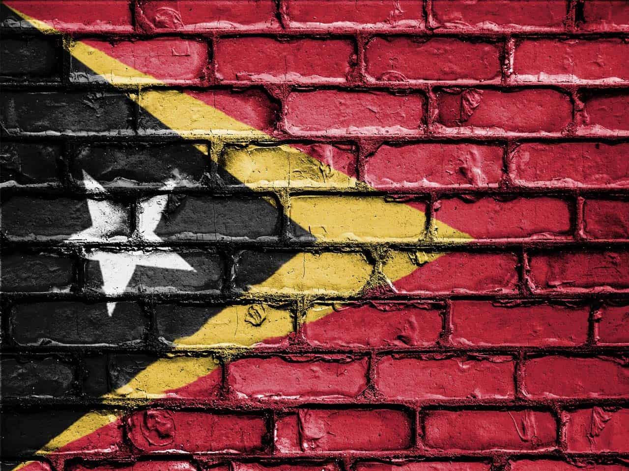 DN Movers Timor Leste
